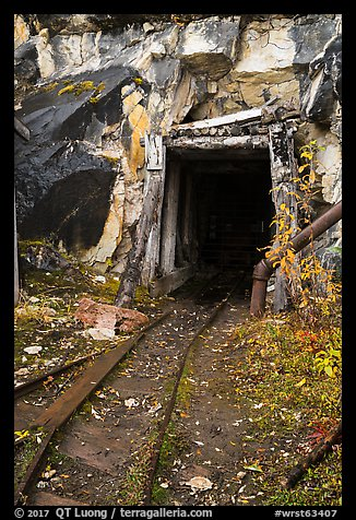 Entrance to Rambler mine. Wrangell-St Elias National Park (color)