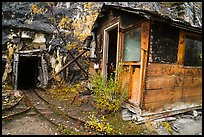 Abandonned cabins and mine entrance. Wrangell-St Elias National Park ( color)