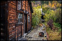 Abandonned cabins and boardwalk. Wrangell-St Elias National Park ( color)