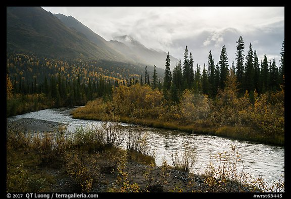 Jack Creek in autumn. Wrangell-St Elias National Park (color)