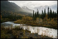 Jack Creek in autumn. Wrangell-St Elias National Park ( color)