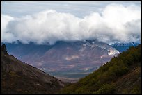Cloud hugging mountaintop across valley. Wrangell-St Elias National Park ( color)