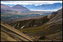 Nabesna River Valley from Skookum Volcano. Wrangell-St Elias National Park ( color)