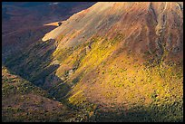 Boyden Hills slopes, sunset. Wrangell-St Elias National Park ( color)
