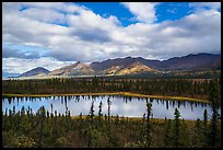 Lake along Nabesna Road. Wrangell-St Elias National Park ( color)