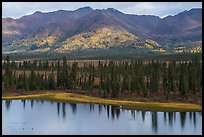 Lakeshore and mountains with autumn foliage. Wrangell-St Elias National Park ( color)