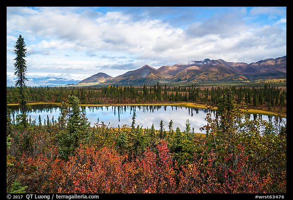 Tundra in autumn and Lake along Nabesna Road. Wrangell-St Elias National Park (color)