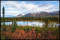 Tundra in autumn and Lake along Nabesna Road. Wrangell-St Elias National Park ( color)