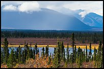 Wrangell Mountains from Nabesna Road in autumn. Wrangell-St Elias National Park ( color)