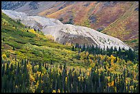 Rock Glacier in autumn. Wrangell-St Elias National Park ( color)