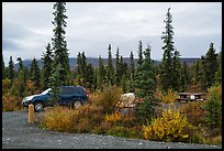 Kendesnii campground. Wrangell-St Elias National Park ( color)