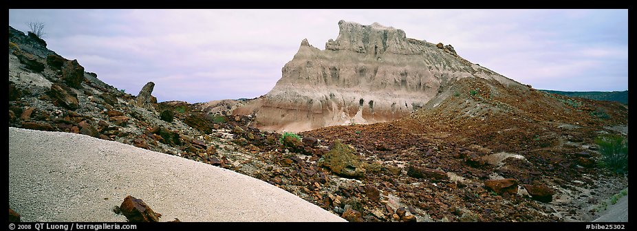 Landscape of white volcanic ash and rocks. Big Bend National Park (color)