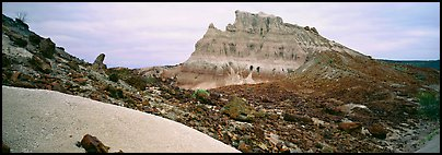 Landscape of white volcanic ash and rocks. Big Bend National Park (Panoramic color)