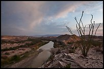 Ocotillo and Rio Grande Wild and Scenic River. Big Bend National Park, Texas, USA. (color)