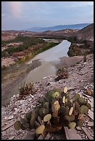 Rio Grande Wild and Scenic River, dusk. Big Bend National Park ( color)