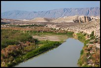 Riparian habitat along Rio Grande River and desert mountains. Big Bend National Park, Texas, USA.