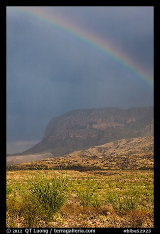 Rainbow over desert and Chisos Mountains. Big Bend National Park (color)