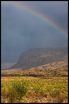 Rainbow over desert and Chisos Mountains. Big Bend National Park, Texas, USA. (color)