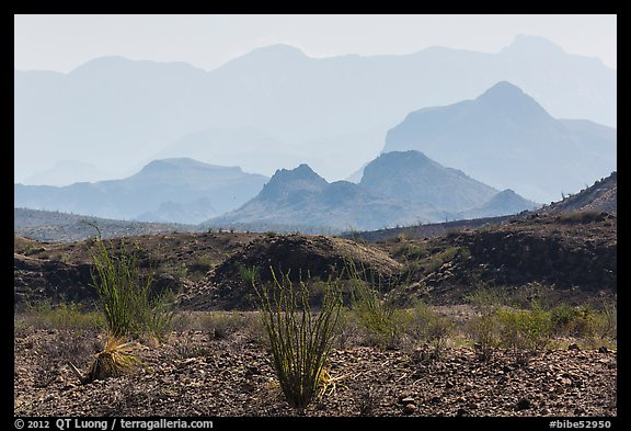 Desert and hazy Chisos Mountains. Big Bend National Park (color)