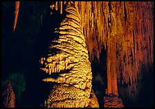 Large stalagmite column and thin stalagtites. Carlsbad Caverns National Park ( color)