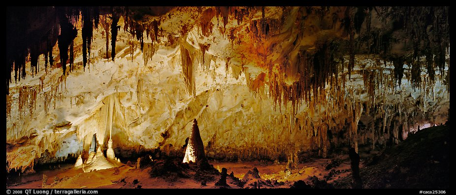 Delicate cave formations in Papoose Room. Carlsbad Caverns National Park (color)
