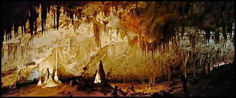 Delicate cave formations in Papoose Room. Carlsbad Caverns National Park (Panoramic color)