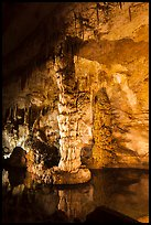 Column in Devils Spring. Carlsbad Caverns National Park ( color)