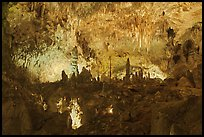 Fairyland, Big Room. Carlsbad Caverns National Park ( color)