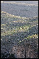 Ridges with desert vegetation. Carlsbad Caverns National Park ( color)