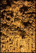 Cave popcorn detail. Carlsbad Caverns National Park ( color)