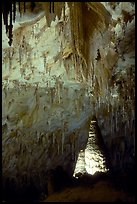 Delicate stalactites in Papoose Room. Carlsbad Caverns National Park, New Mexico, USA. (color)