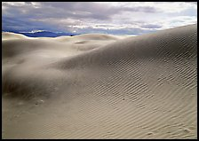 Sensuous dune forms. Death Valley National Park, California, USA. (color)