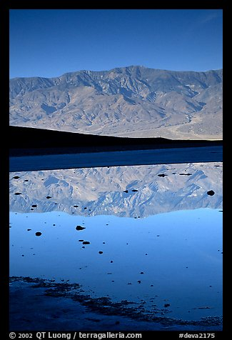 Panamint range reflected in pond at Badwater, early morning. Death Valley National Park (color)