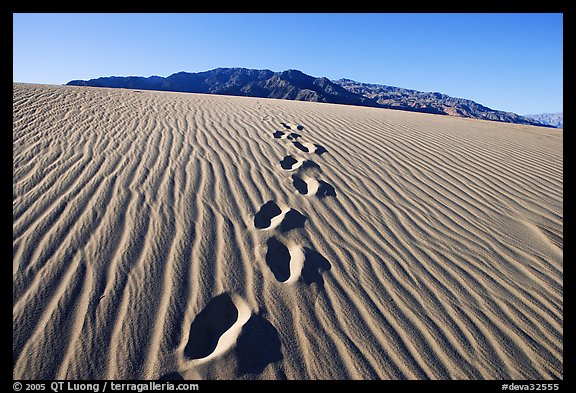Footprints in the sand leading towards mountain. Death Valley National Park (color)