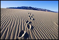 Footprints in the sand leading towards mountain. Death Valley National Park, California, USA.