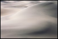 Sensuous forms in the sand, Mesquite Dunes, morning. Death Valley National Park ( color)