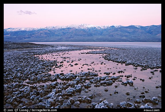 Pond and salt formations, Badwater, dawn. Death Valley National Park, California, USA.