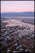 Recently emerged salt pools, Badwater, dawn. Death Valley National Park, California, USA. (color)