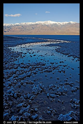 Salt pool and Panamint range, early morning. Death Valley National Park (color)
