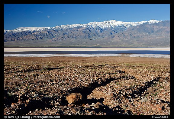 Valley with seasonal lake in the distance and Panamint Range, morning. Death Valley National Park (color)