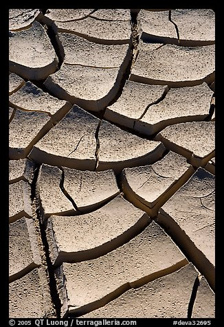 Cracked mud. Death Valley National Park (color)