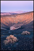 Sagebrush and Ubehebe Crater at dusk. Death Valley National Park, California, USA. (color)