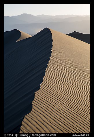 Dune ridge, late afternoon. Death Valley National Park (color)