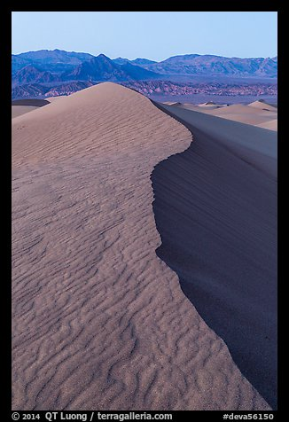 Dune ridge and Amargosa Range at dusk. Death Valley National Park (color)