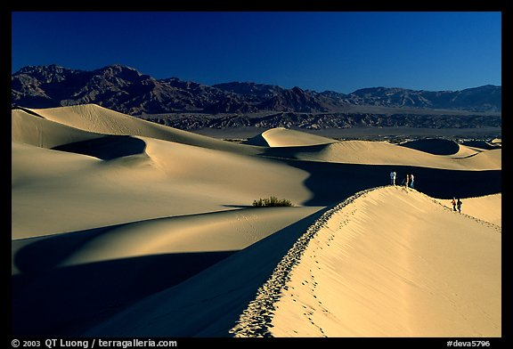 Dune field with hikers, Mesquite Dunes. Death Valley National Park (color)