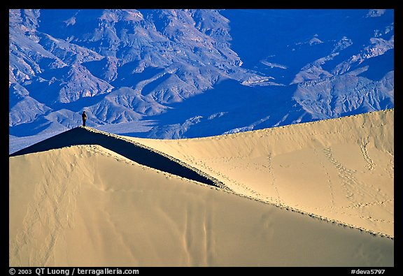 Hiker on sand dunes. Death Valley National Park (color)