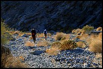 Hikers in a side canyon. Death Valley National Park, California, USA. (color)