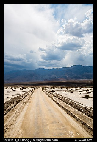 Road crossing Salt Pan. Death Valley National Park (color)