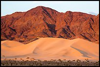 Ibex Dunes and Saddle Peak Hills at sunset. Death Valley National Park ( color)