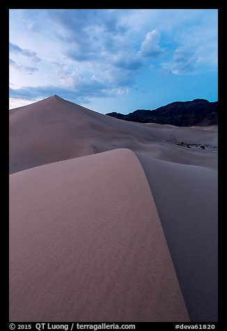 Ibex dunes field at dusk. Death Valley National Park (color)